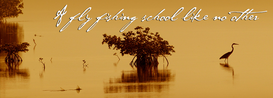fly fishing school - florida keys outfitters, Fly Fishing Bait